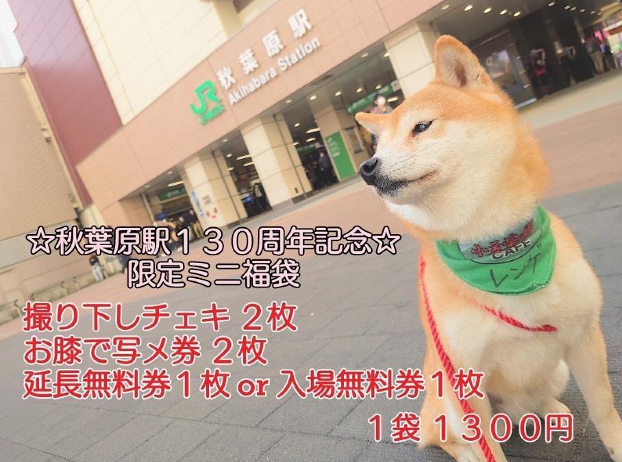 JR秋葉原駅130周年記念!ミニ福袋
