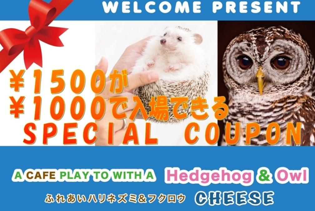 ¥1,500が⇒¥1,000で入場できるお得なクーポン✩
